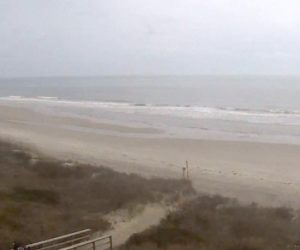 isle of palms live beachcam