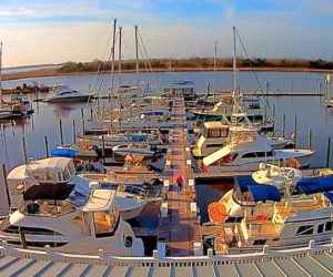south port marina webcam
