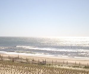 beach haven live cam