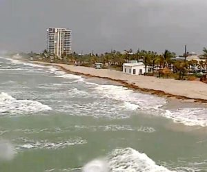 dania beach fl webcam