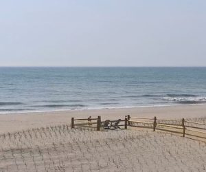 ortley beach webcam