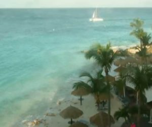 divi-beach-live-cam