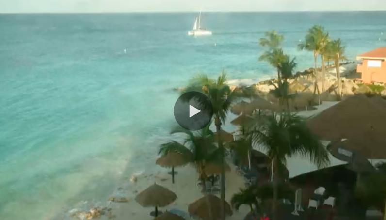 divi-beach-live-cam-placeholder
