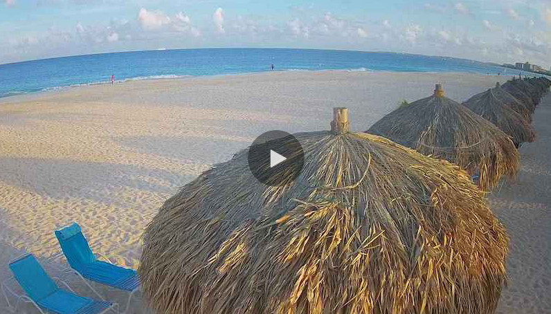 eagle-beach-live-cam-placeholder