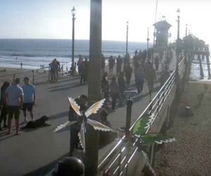 huntingdon beach pier live cam