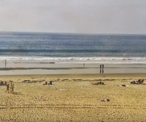 pacific beach live cam
