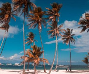 mexico webcams at the beach