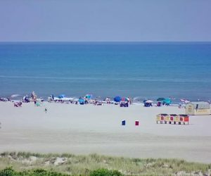 wildwood nj webcam
