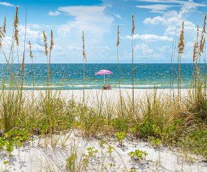 alabama beach webcams