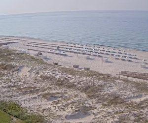 orange beach live cam